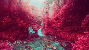 These beautiful images may look like something from an alien world - but they were actually created using a special type of infrared film, Pictured here is from the Annapurna Himalayan Region of Nepal