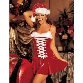 Charming Santa Strapless Dress Adult Women Christmas Costume