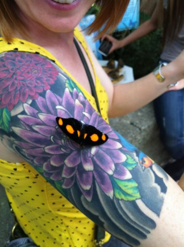 A Butterfly Landed On A Tattoo Thinking It Was A Real Flower
