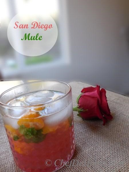 Looking forward to watch my hometown San Diego Chargers take on the Cincinnati Bengals tomorrow, and my San Diego Mule will cheer up the supporters. Cheers!!