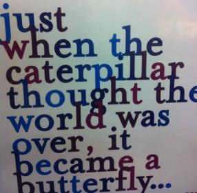Just when the caterpillar thought the world was over, it became a butterfly...