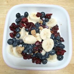 Delicious Granola and Fruit Cereal