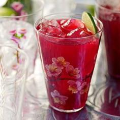 Hibiscus Tea with Vodka and Citrus - this floral-tea and vodka cocktail is perfect for summer.